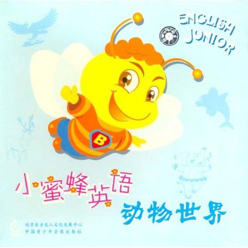 小蜜蜂英语动物世界(2vcd)