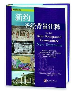新约圣经背景注释.pdf