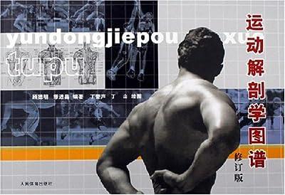 运动解剖学图谱.pdf