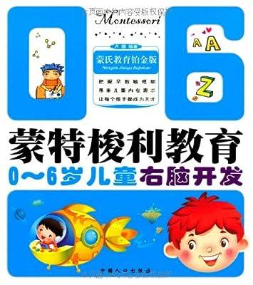 蒙特梭利教育丛书:0-6岁儿童右脑开发.pdf