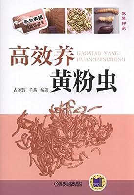 高效养黄粉虫.pdf
