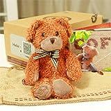 正品现货 比亚哥伦熊 咖啡熊 泰迪熊 健康熊 蜘蛛侠熊 coffee bear毛绒玩具公仔玩偶布娃娃生日礼物-图片