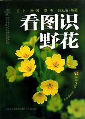 看图识野花.pdf