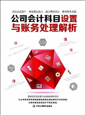 公司会计科目设置与账务处理解析.pdf