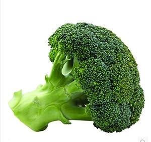 御春阁 蔬菜种子 西兰花 阳台种菜 花菜种子 小菜园种植 菜籽 易种