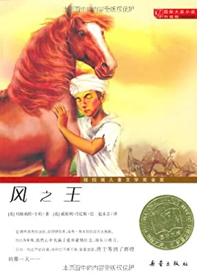 国际大奖小说•升级版:风之王.pdf