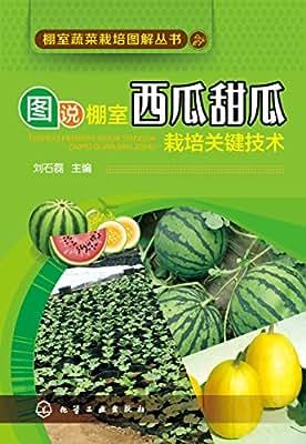 棚室蔬菜栽培图解丛书--图说棚室西瓜甜瓜栽培关键技术.pdf