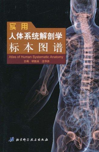 实用人体系统解剖学标本图谱图片