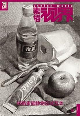 素描视界:柯略素描静物应试范本.pdf