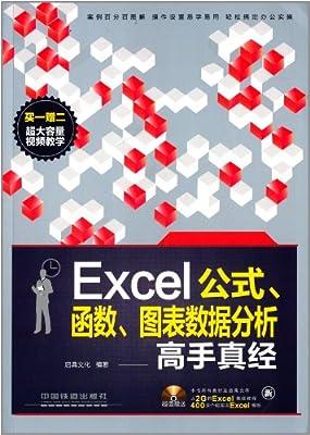 Excel公式、函数、图表数据分析高手真经.pdf