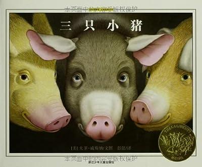 绘本博物馆·大师经典系列:三只小猪.pdf