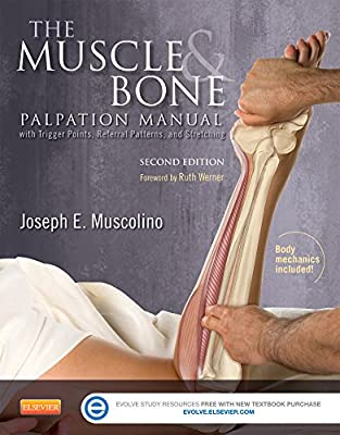 The Muscle and Bone Palpation Manual with Trigger Points, Referral Patterns and Stretching.pdf