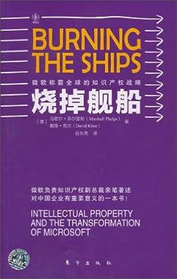 烧掉舰船:微软称霸全球的知识产权战略.pdf
