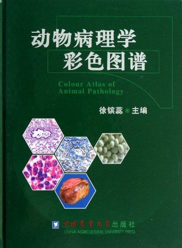 动物病理学彩色图谱图片