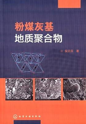 粉煤灰基地质聚合物.pdf