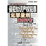 侵犯知识产权犯罪定罪量刑案例评析/定罪与量刑案例评析丛书