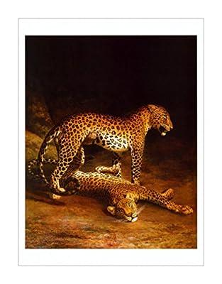 原版进口装饰画 两个豹子打在埃克塞特更改动物园,约