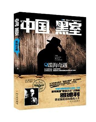 中国黑室:谍海奇遇.pdf