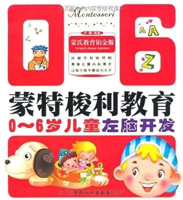 蒙特梭利教育丛书:0-6岁儿童左脑开发.pdf