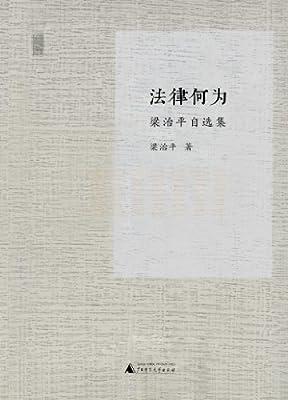 梁治平自选集:法律何为.pdf