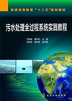 污水处理全过程系统实践教程.pdf