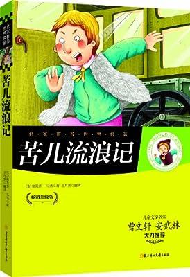 苦儿流浪记.pdf
