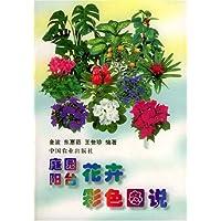 http://ec4.images-amazon.com/images/I/51yxWyHeB4L._AA200_.jpg