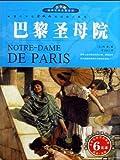 巴黎圣母院(青少版)-图片