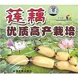 莲藕优质高产栽培(VCD)-图片