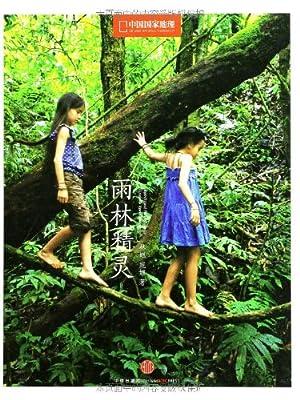 雨林精灵.pdf