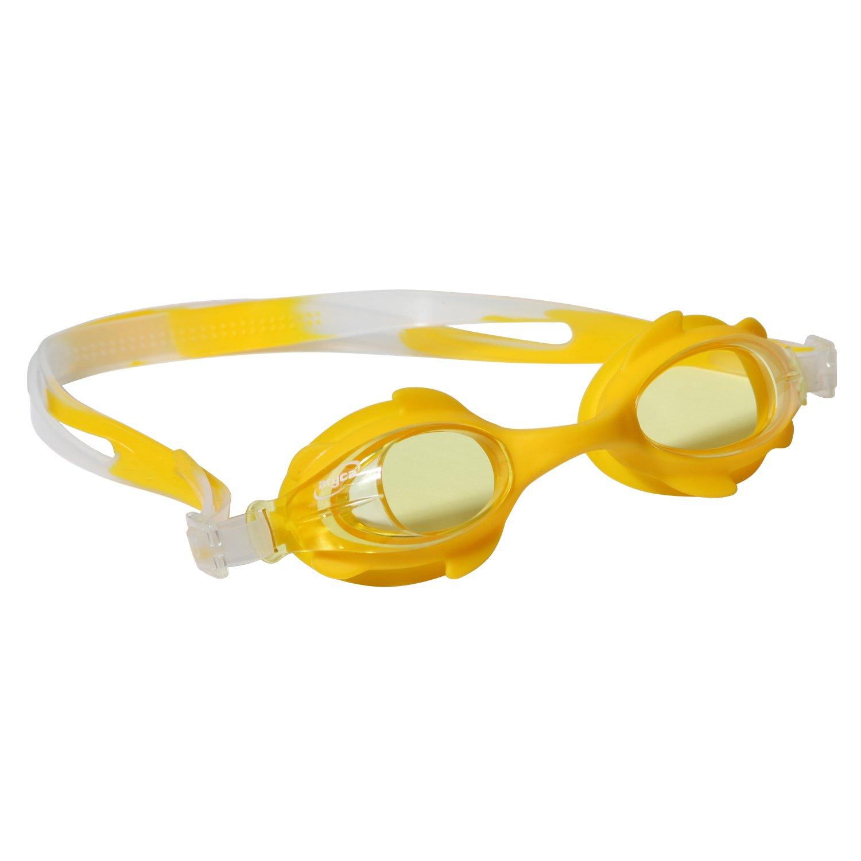 anti fog goggles  aryca goggles