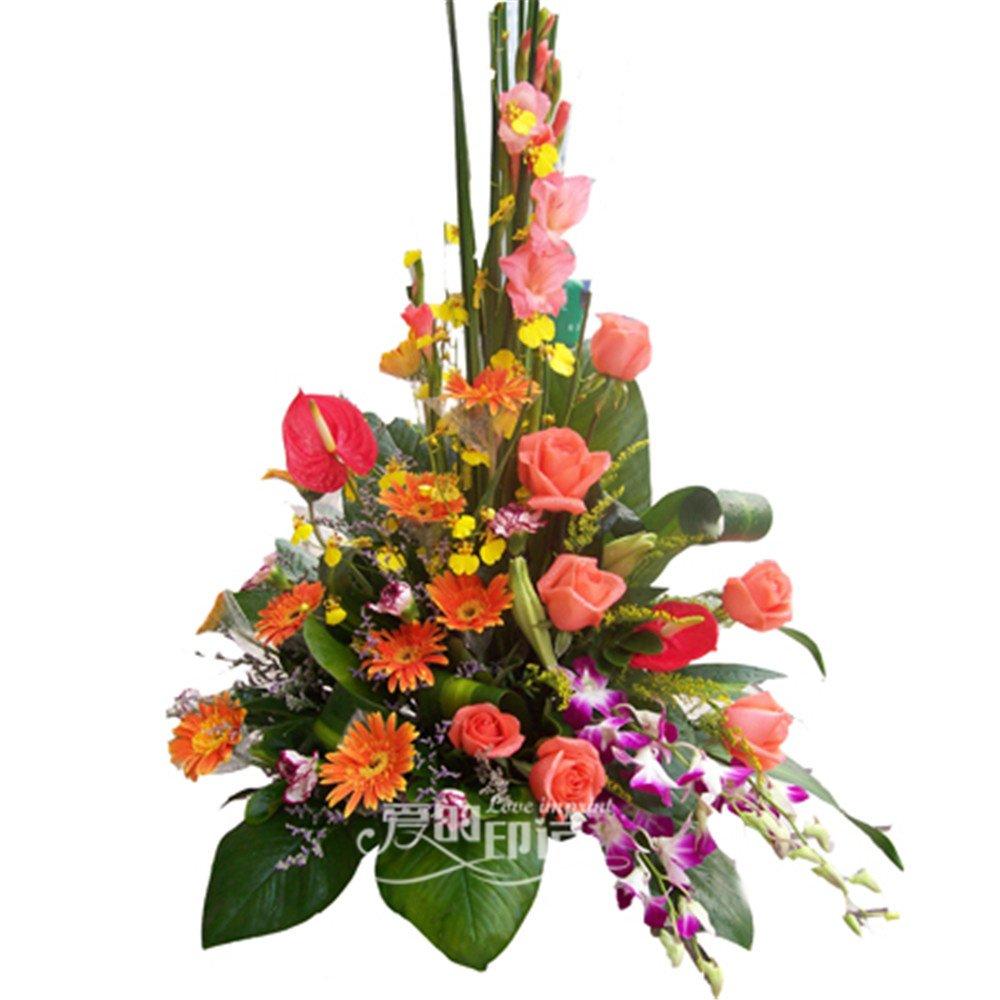 全国鲜花速递 10支粉玫瑰 10支橙色太阳花 2支红掌 3支剑兰 祝贺鲜花