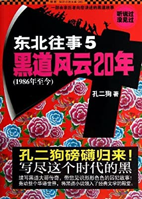 东北往事5:黑道风云20年.pdf