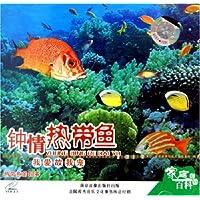http://ec4.images-amazon.com/images/I/61Rpk2R5O8L._AA200_.jpg