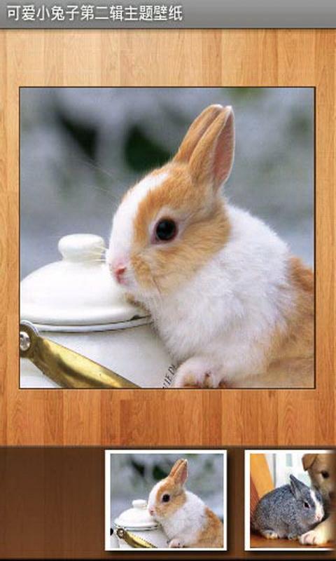 可爱小兔子第二辑主题壁纸-亚马逊应用商店-亚马逊中国