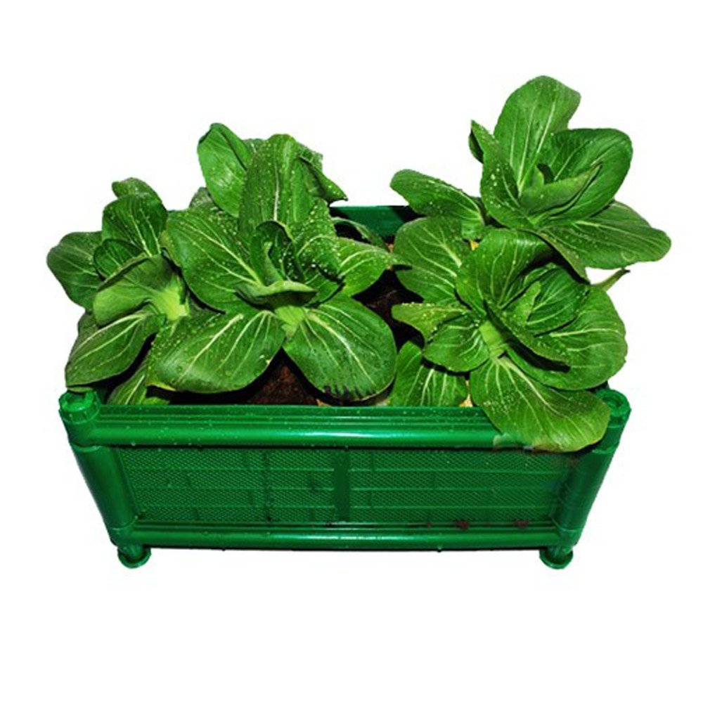 阳台菜园 绿色蔬菜种植 城市阳台蔬菜种植箱45*25*32cm 阳台种菜套装