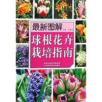 http://ec4.images-amazon.com/images/I/61XPQBsFg3L._AA200_.jpg