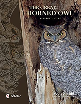 Great Horned Owl: An in-Depth Study.pdf
