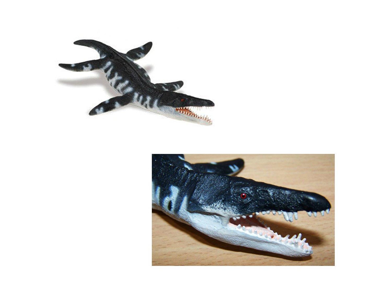滑齿龙/上龙(ws) 海洋生物