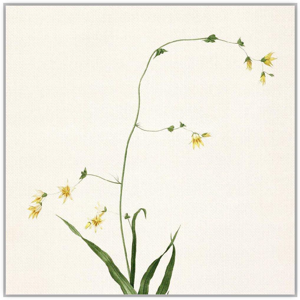 轻艺术 自然萌物 春的呼吸 e款 文艺清新手绘花卉图片海报定制装饰画