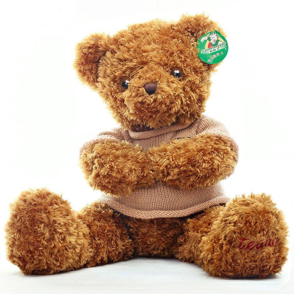 飘飘龙 可爱布娃娃 大号毛绒玩具泰迪熊公仔 创意玩偶