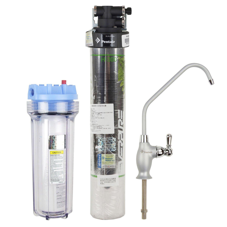 Everpure 爱惠浦 H-300型 加强款净水器 二个 单价600
