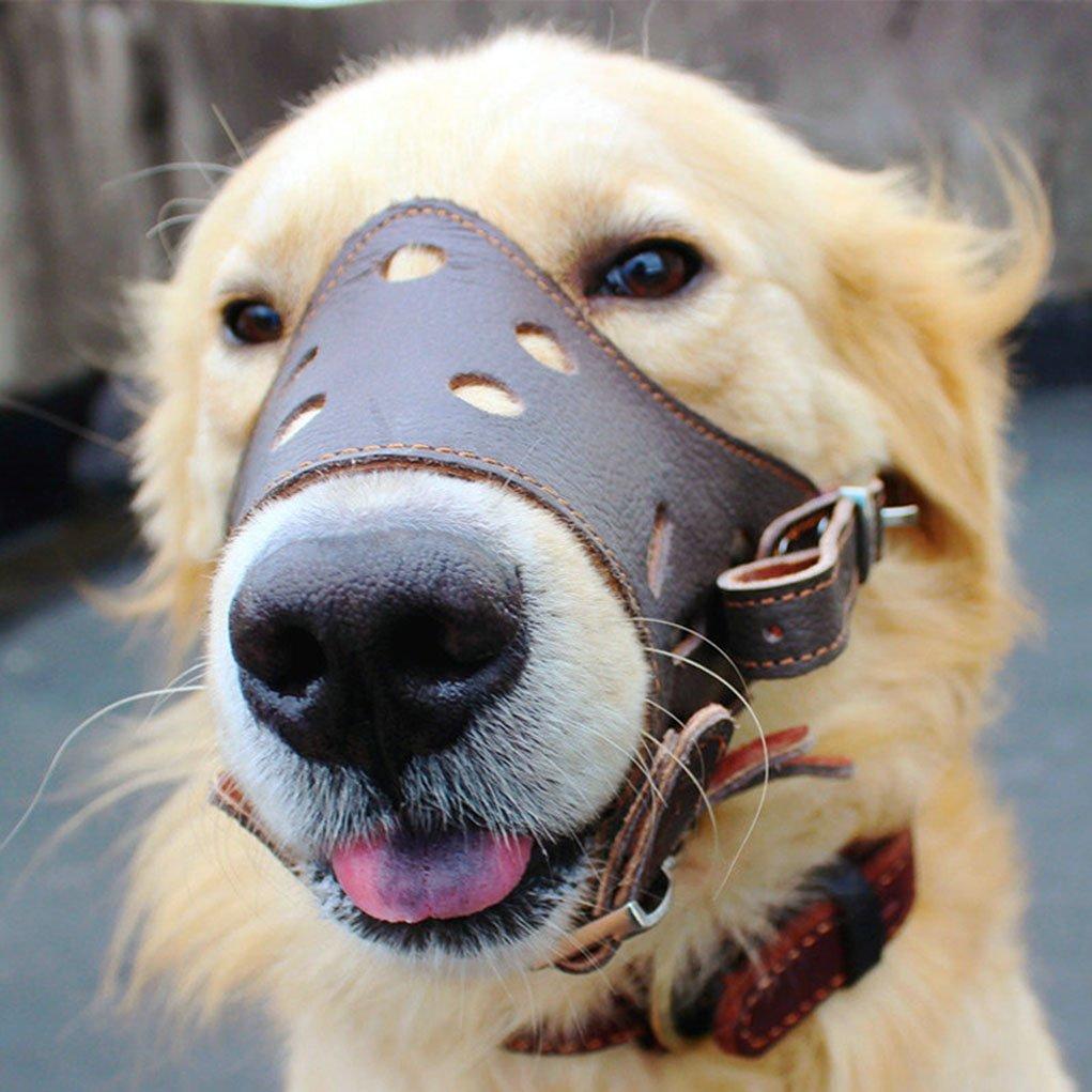 骑士风 战斗造型 霸气中大型犬 宠物狗 户外 止吠 狗狗防叫咬真皮 嘴