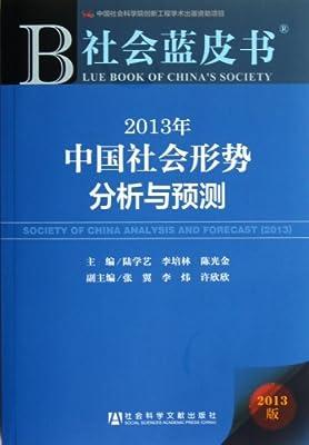 2013年中国社会形势分析与预测/社会蓝皮书.pdf