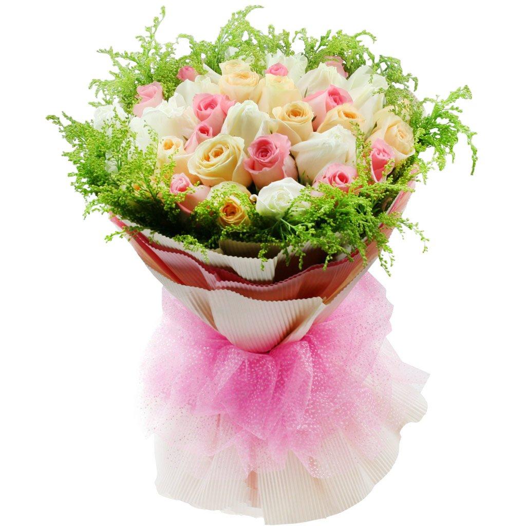 花柚粉色鲜花速递白色香槟全国色三色玫瑰各11枝女生v粉色梦见图片