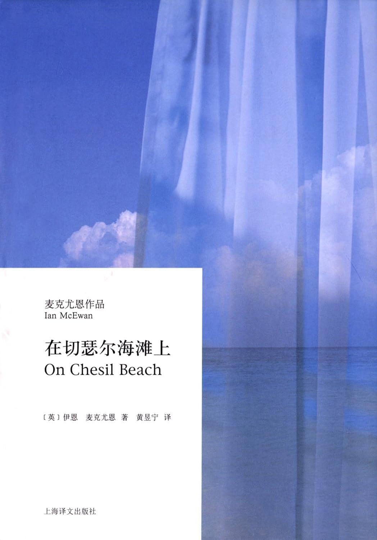 在切瑟尔海滩上小说