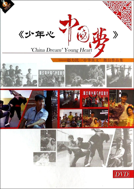 dvd少年心中国梦