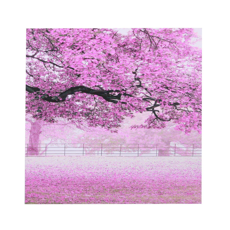 《樱花树系列3图片