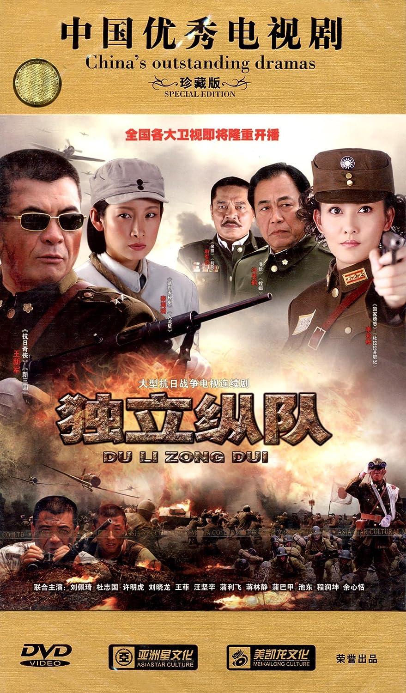 独立纵队(14dvd)