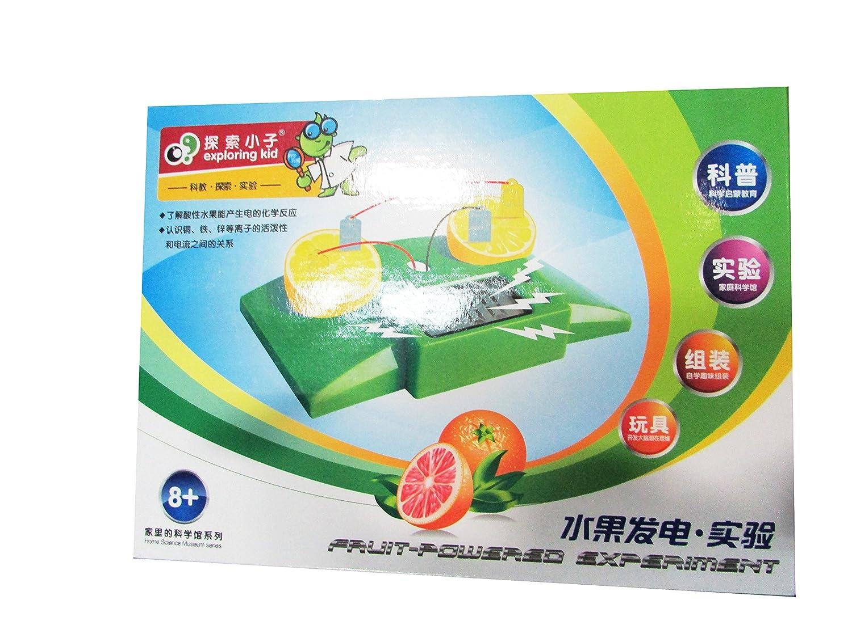 探索小子 科普益智系列 水果发电实验 0.28kg ek-d003